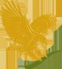forever living vera gel logo