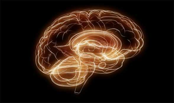 Brain function and power