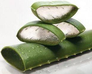 inner leaf aloe vera gel