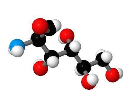 glucosamine sulphate in forever freedom gel