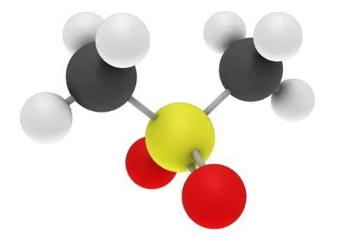 methylsulfonylmethane molecule