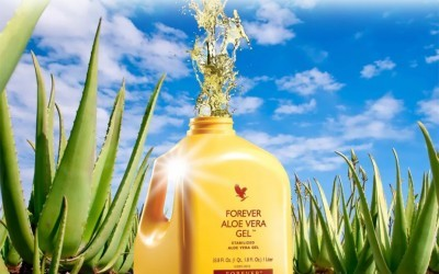 ingredients inside a bottle of forever aloe vera gel